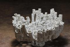 Coral Porcelana Con Manganeso 2012