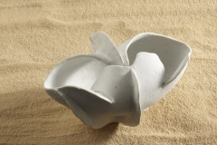 Pez Porcelana02